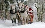 Сани Деда Мороза, или каким транспортом пользуется волшебный дедушка под Новый год?