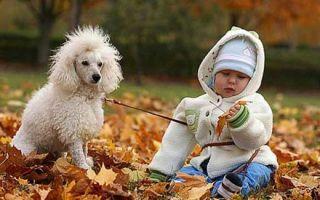 Детская одежда: основные модные тренды