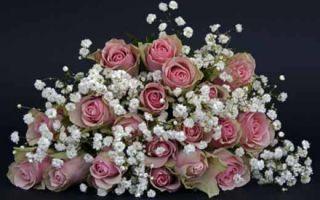 Цветы в подарок по любому случаю