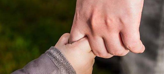 Детские шаги: отношения между родителями и детьми в случаях гестационного суррогатного материнства